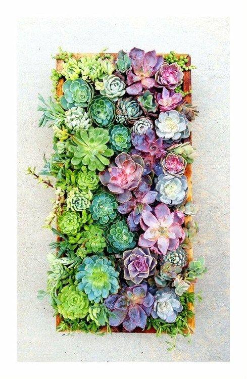 κάθετες ιδέες κηπουρικής23