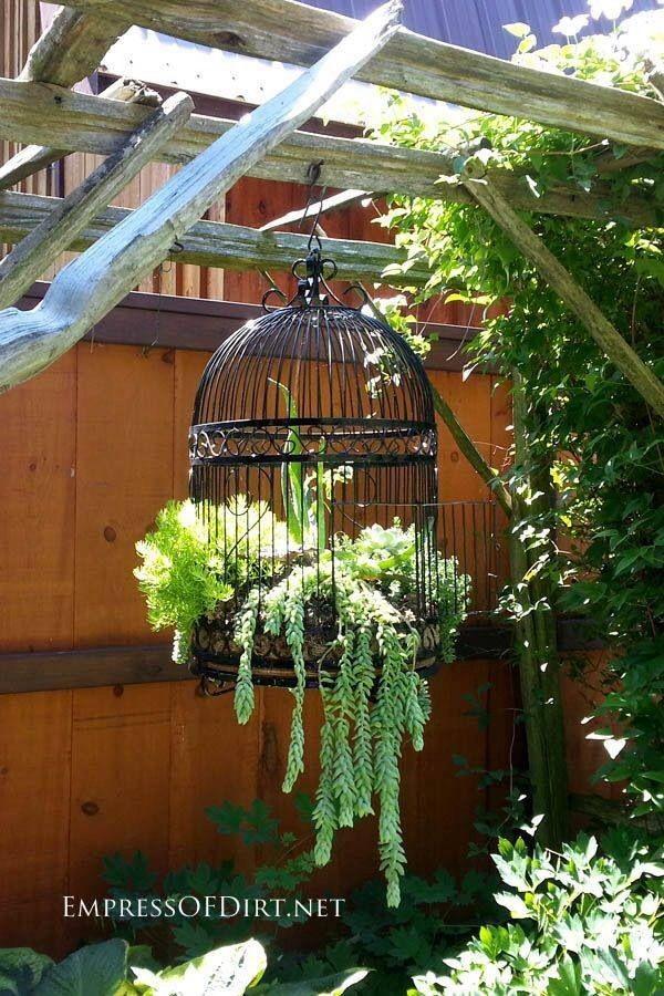 κάθετες ιδέες κηπουρικής37