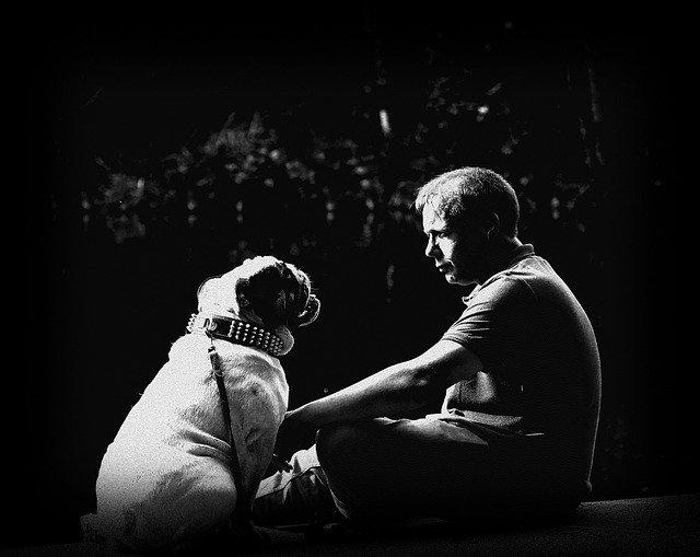 Όταν είδε πραγματικά πως αγαπούν οι άνθρωποι, αποφάσισε να πάρει σκύλο