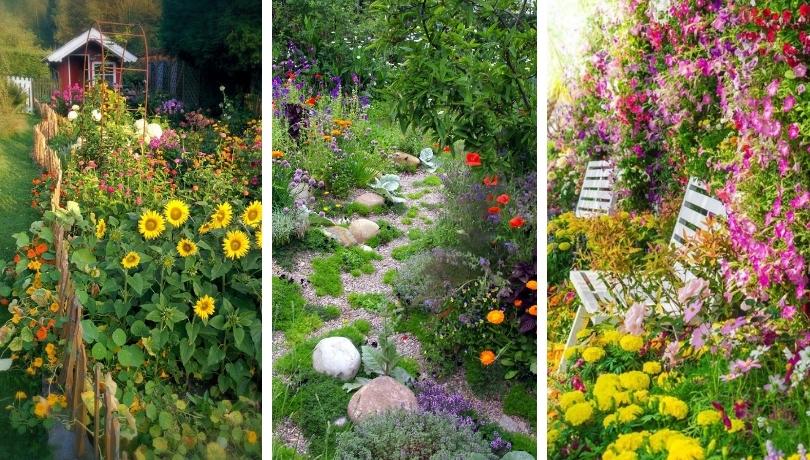 22 Πανέμορφες ιδέες για ένα κήπο με πολύχρωμα λουλούδια
