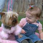 """My Granddaughter """"Alexis"""" is quite Amazed at how pretty Romeo looks in Pink!"""