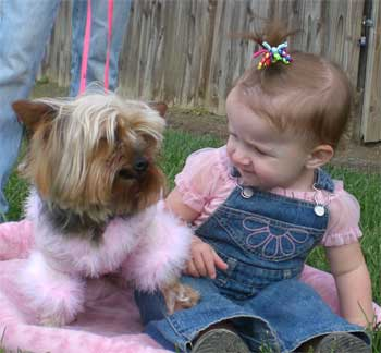 "My Granddaughter ""Alexis"" is quite Amazed at how pretty Romeo looks in Pink!"
