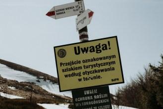 biesy - www.karolnycz.com -28
