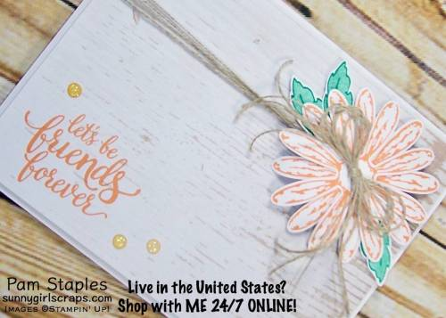 Daisy Delight card featuring the Delightful Daisy Bundle along with the Wood Textures Designer Series Paper Stack. Card created by Pam Staples. Visit sunnygirlscraps.com to place an order. #daisydelight #stampinup #sunnygirlscraps #watercolor