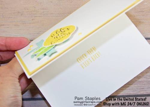 The Lemon Zest Stamp Set is so fun and perfect for making fun at myself. This Clean and Simple card showcases a lemons. Handmade card by Pam Staples, SunnyGirlScraps Stamp with SunnyGirlScraps today. Place an order today by visiting: www.sunnygirlscraps.com #lemonzest #stampinup #sunnygirlscraps #papercrafting #papercrafts #stamping #stamps #papercraft #rubberstamp #rubberstamps #artsandcrafts #hobby #crafts #craftastherapy #createeveryday #happymail #snailmail #creativelifehappylife #handmadeisbetter #craftsposure #creativemess #christiancreative #becreative #instagood #crafters #diy #smallbusiness #cardmaking #cardmaker #handmadecard #handmadecards