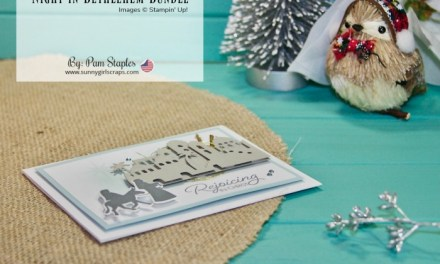 SUOC189 Favorite Holiday Colors with Night in Bethlehem Handmade Card