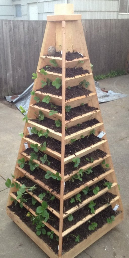 Cool Pyramid strawberry planter