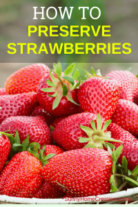 How to Preserve Strawberries