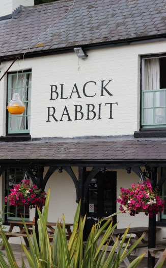 Arundel Black_Rabbit