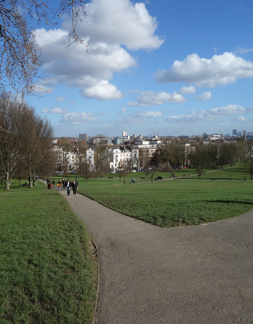 Primrose Hill London View