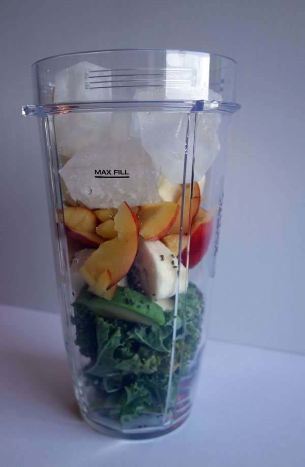 Nutribullet vs Ninja Bullet Blender Comparison