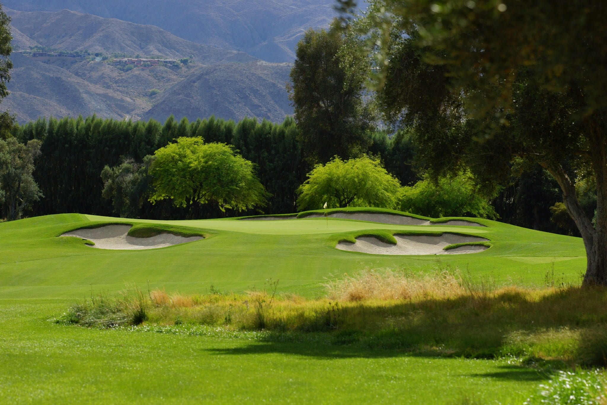 Image result for sunnylands golf