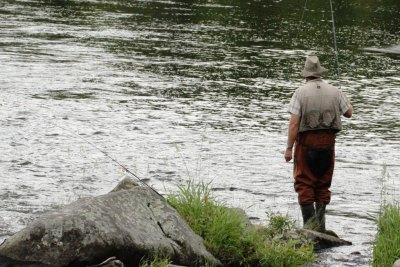 summer-fishing1