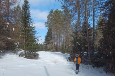 winter-snowshoeing1