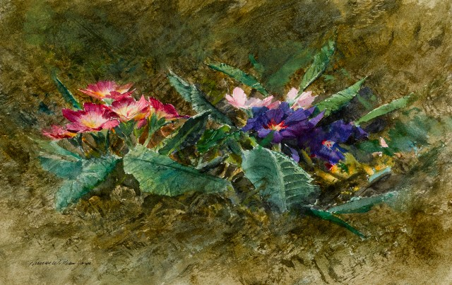 Thomas William Jones, Primroses, 8.5x13.5