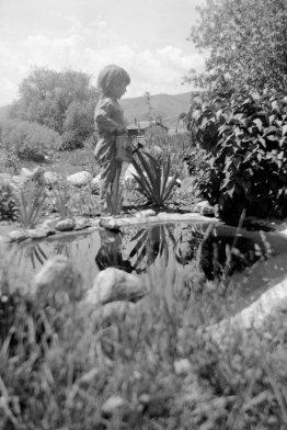Margaret Dodgson, ranch, looking toward studio b