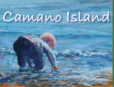 Camano Island Poster