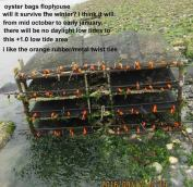 oyster-bags