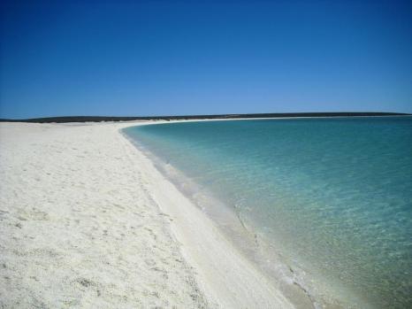 Roadtrip Australien Westküste Shell Beach