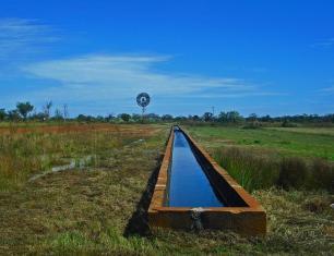 Roadtrip Australien Wassertränke Derby