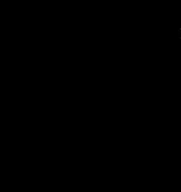 logo-black-retina