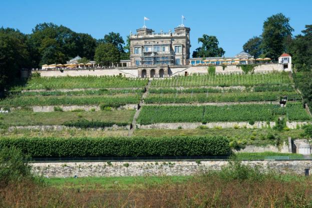 Unternehmungen Dresden: Schloss an der Elbe