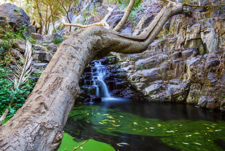 Wasserfall La Gomera