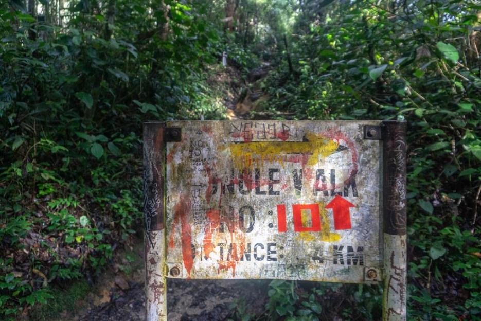 cameron highlands malaysia trek 10