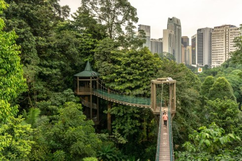 kl forest eco park kuala lumpur