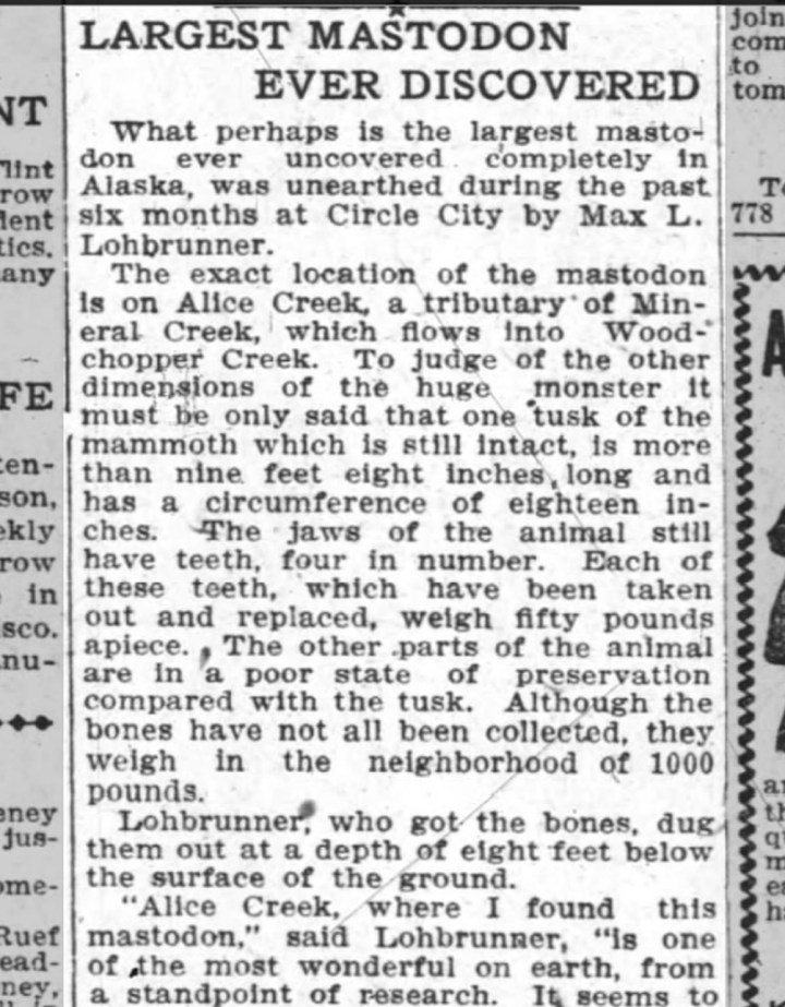 News item from the Oakland Tribune, 9 April 1907. Max Lohbrunner uncovers the largest mastodon ever found, in Alice Creek, Alaska. From Newspapers.com.