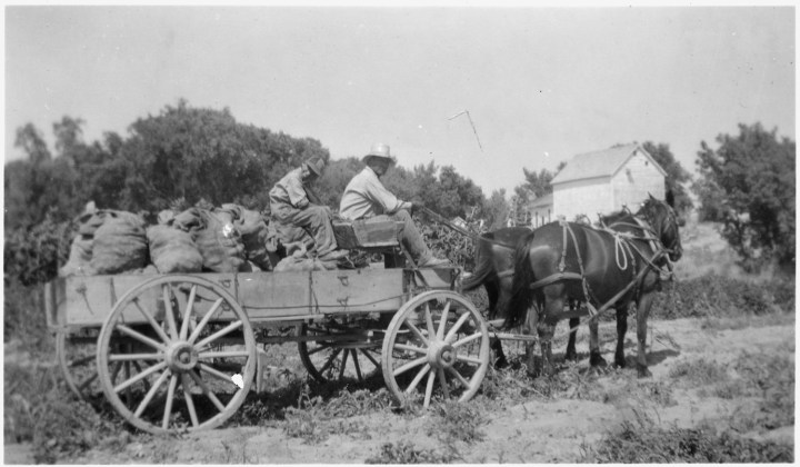 horsedrawn-wagon-s