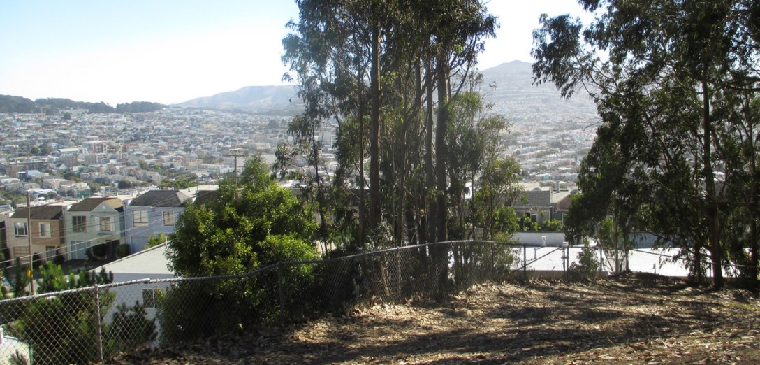 View from Dorothy Erskine Park. Photo: Amy O'Hair