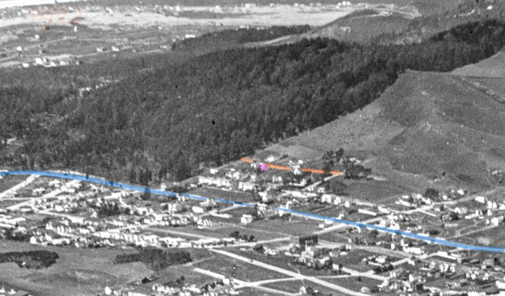 1922. Detail of aerial photo, showing Sutro's forest west of Ridgewood Ave. 600 block of Mangels marked orange. Monterey blue. 663 Mangels pink. OpenSFHistory.org.