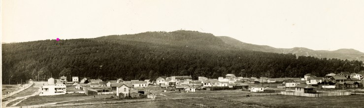 1910. View of Sutro's Forest, looking north from the present Ingleside neighborhood. Approximate location of Shoot's mining camp marked with pink dot. Ashton Avenue on far right of image. Ocean Avenue formed the southern edge of the forest, foreground here. Image courtesy the Sutro Library.