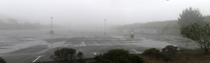 Fog on the Balboa Reservoir. Dec 2020. Photo: Amy O'Hair