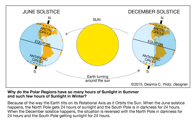 Arctic Poles Graphic