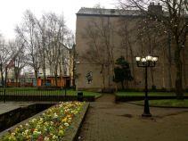 Bishop Lucey Park 1
