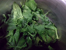(2) Spinach leaves removed from stem then cooked in a pot with 1/3 cup of water for a few minutes (just to soften) then set aside.
