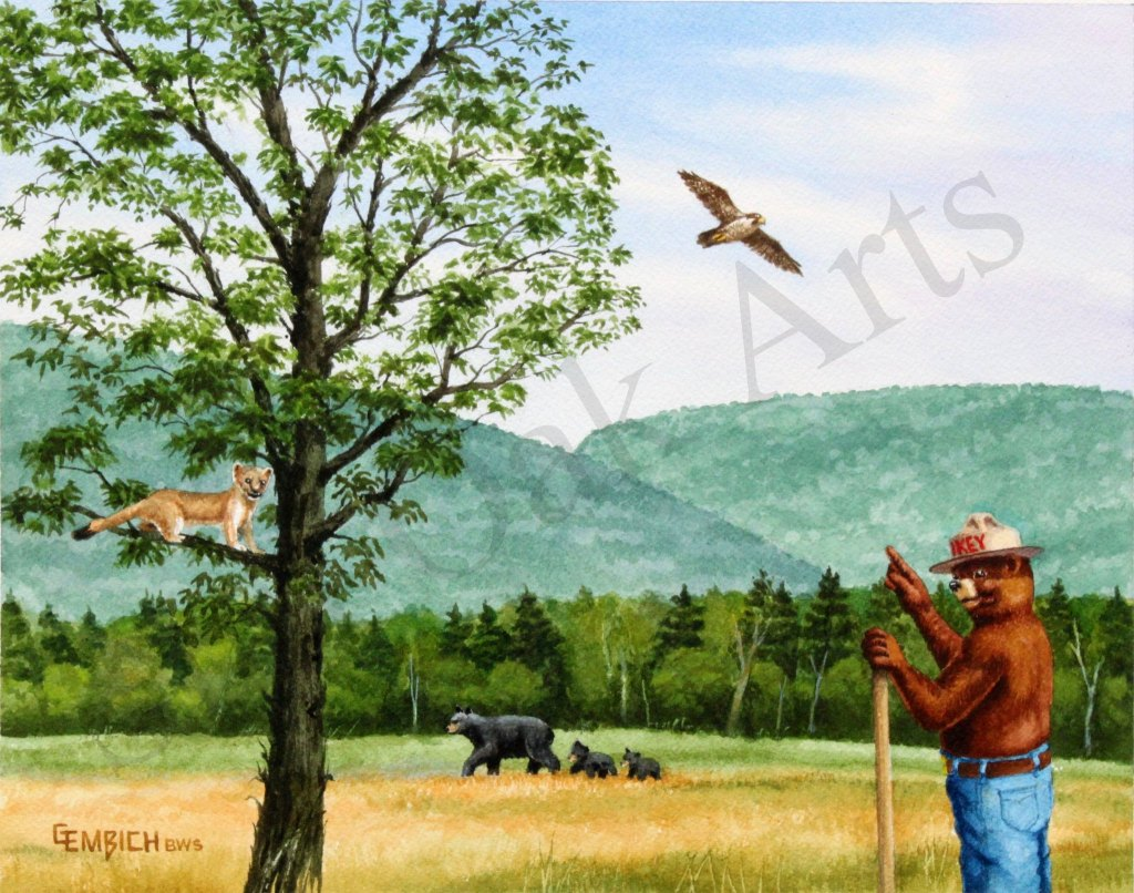 Catskill Forest Preserve