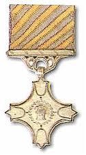 vayu sena medal