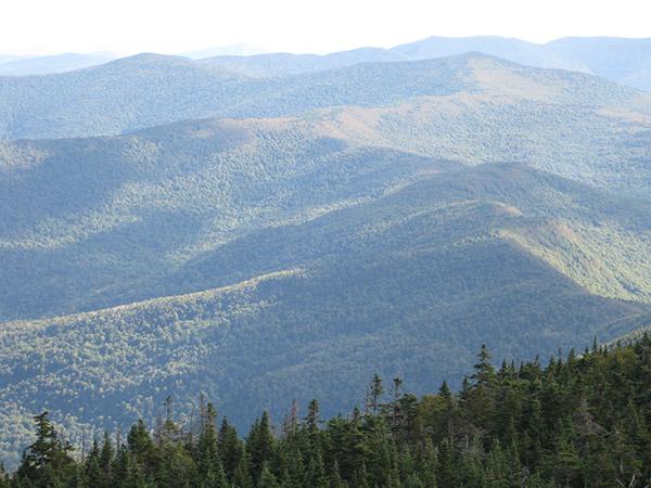 Battell Trail Mount Abraham Lincoln VT