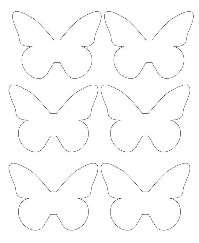 Keskikokoiset perhoset kuvio