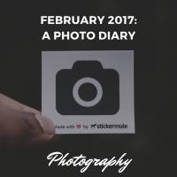 February 2017: A Photo Diary