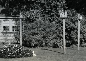 anns-birdhouses