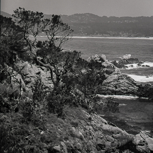 pt-lobos-toward-carmel