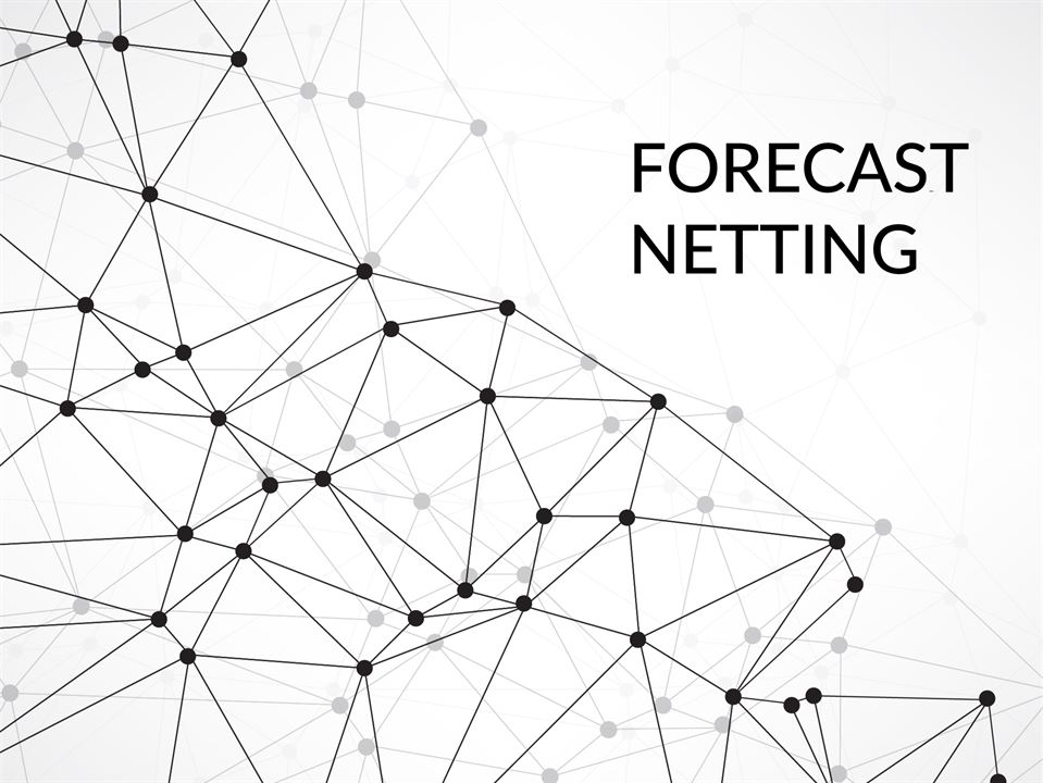 Forecast Netting: An Art & a Science Keeps Supply and
