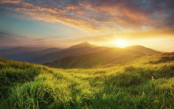 Patagonia Customer Story - Sunrise And Microsoft Dynamics Ax