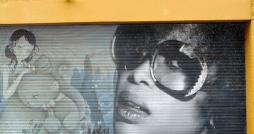 Street Art - Husky Brown