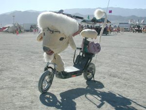 Motor assisted scooters such as this one are generally permitted on the Playa