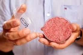人工培養肉
